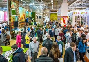 Чем удивит выставка «Недвижимость от лидеров» в 2018 году?