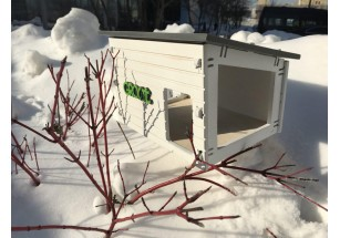 Бургер из семечек с салом, тыквенные снеки и коктейли из рябины: стало известно меню в ресторанах для птиц, открывающихся в Подмосковье
