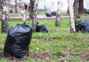 В Подмосковье будут активнее бороться с мусором