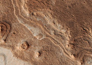 NASA объявило победителей конкурса «марсианского жилья»