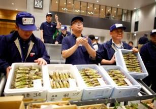 В Токио открылась новая рыбная биржа