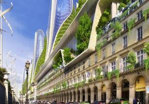 В Париже планируется «глобальное» озеленение