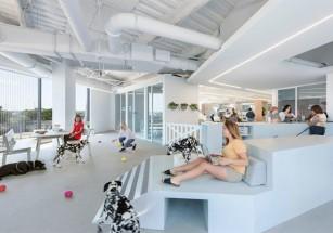 Эксперты назвали лучшие офисы на планете